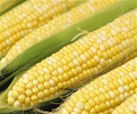 Herb of DC: Please People: Stop the Insane In-Store Corn